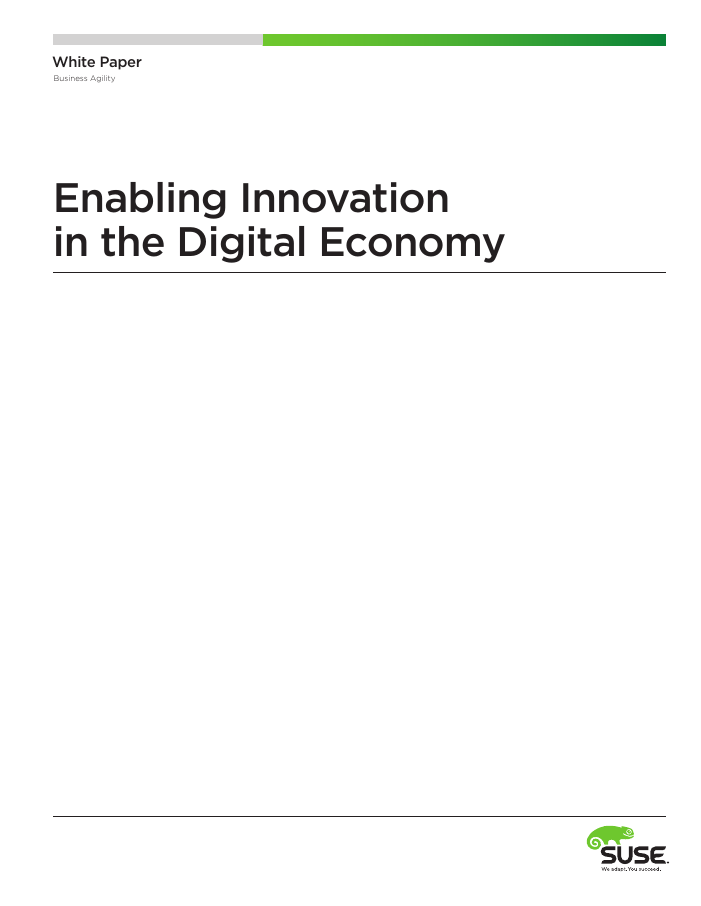 Enabling Innovation in the Digital Economy
