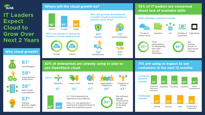 IT Leaders Expect Cloud to Grow over the Next Two Years