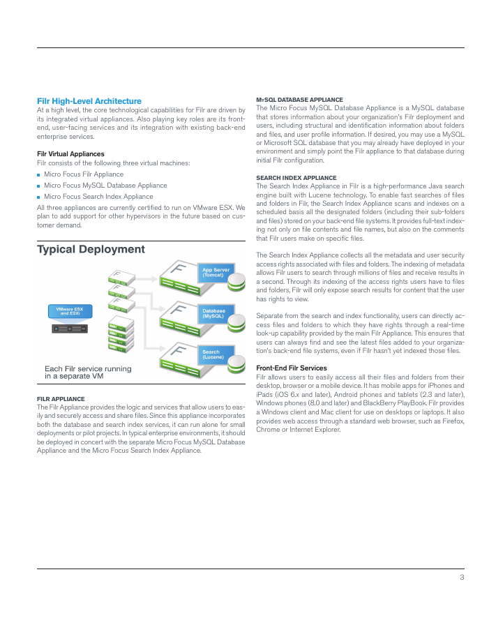 White Paper - An Enterprise Approach to Mobile File Access and Sharing