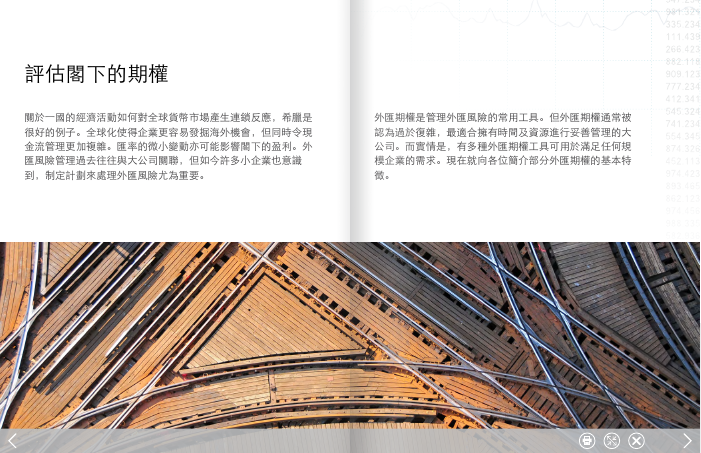 eBook: 期權指引