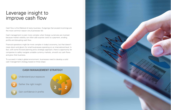 eBook: Cash Management