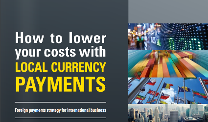 eBook: How to Lower Costs with Local Currency Payments