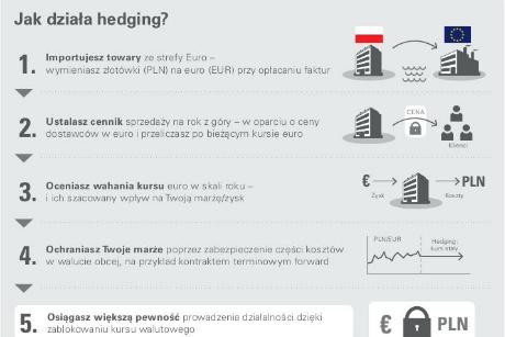 Infografika: Czym jest hedging?